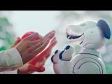 Sony показала нового робопса AIBO с искусственным интеллектом