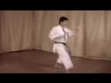 Enoeda Otta Sensei Kata 11-20 Jitte - Jiin