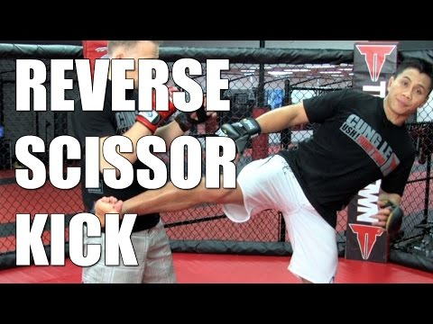 Reverse Scissor Kick : MMA Tips : Cung Le