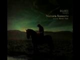 Damabiah - Sur Les Genoux De Lautomne (Henry Saiz Remix)