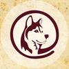 Телеканал  «Пёс и Ко»