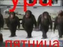 Video 62392840de0f482856eb73f6df780f17