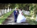 Весілля Дмитро Наталя