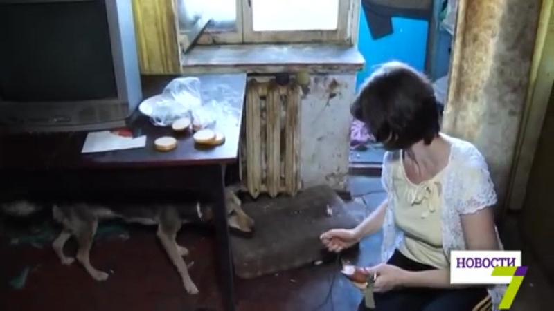 В Одессе с помощью лома освободили животных, умирающих от голода