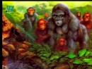 01-Проблема происхождения человека с древнейших времён до Чарлза Дарвина