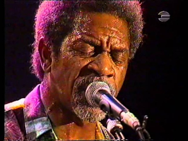 Luther Allison - Live at Sommerfest (1995)