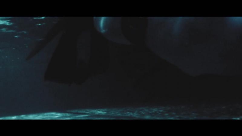 Клуб подводных охотников Нева