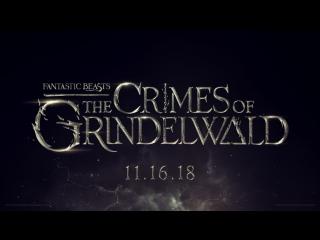 Молодой Дамблдор, Джонни Депп в роли Геллерта Гриндевальда и многие другие новости о второй части Фантастических тварей.