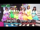 Geishun Dai Gakugei Kai ~forever aiai~. Announcement of TV broadcast