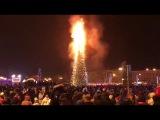 В Южно-Сахалинске горит новогодняя елка