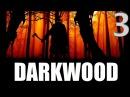 Самая страшная ночь ● Darkwood 3