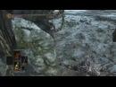 Dark Souls 3 Giants vs Gankers · coub коуб