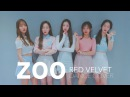 "Red Velvet 레드벨벳 ""ZOO"" 커버댄스 DANCE COVER MIRRORED @MTY"