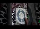 Смотрите как насекомые кушали Коран