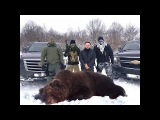 Спецназ против медведя Опасная охота с Серегой Штык