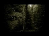Forest of Shadows - Wish   (DeathDoom metal )