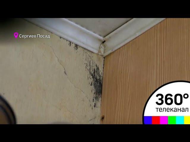 Плесень по стенам, гниющие обои и деревянные двери, которые превращаются в труху