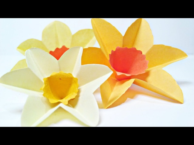 Daffodils Narcissus paper flower for wall decoration arts and crafts paper flowers easy for kids