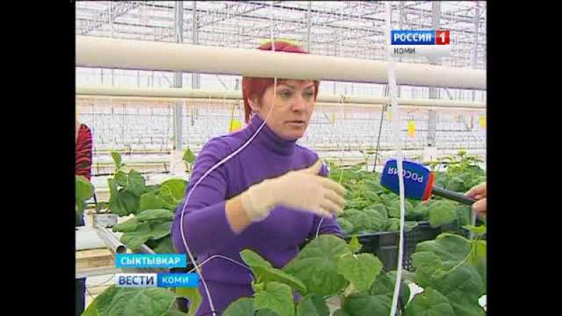 Вести-Коми (на коми языке) 16.01.2018