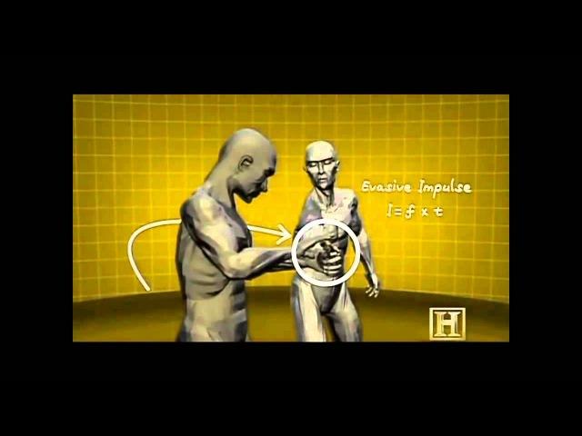 Human Weapon Kung Fu Martial Arts Krav Maga