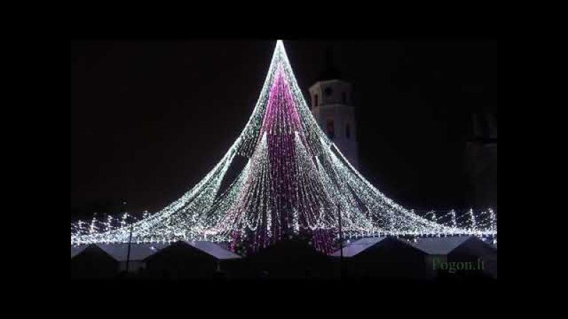 Vilniaus Kalėdų eglės įžiebimo šventė Katedros aikštėje.