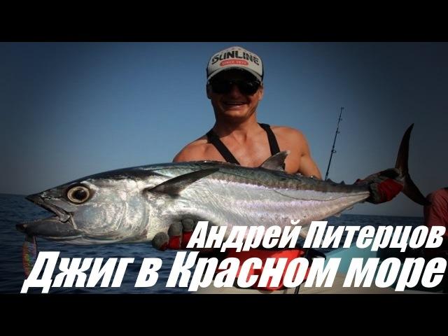 Ловля на джиг в Красном море. Блог Андрея Питерцова