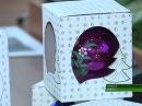 Карачевские ёлочные игрушки и Дятьковский хрусталь признаны изделиями народны