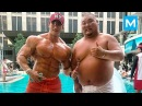 KOREAN MASS MONSTER - Chul Soon | Muscle Madness