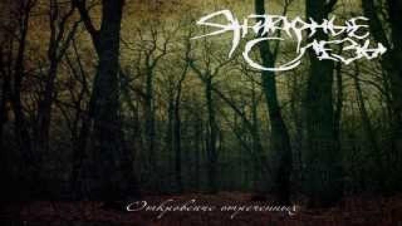 Amber Tears - Revelation Of Renounced (re-release) Full Album