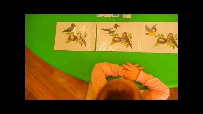 НЕГОВОРЯЩИЕ ДЕТИ: Логоритмика Звук К КУКУШКА