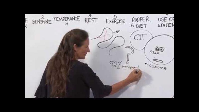 1 _ДНК и истинная причина заболевания, Барбара ОHил
