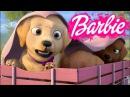 Барби и щенки в поисках сокровищ тайный план щенков