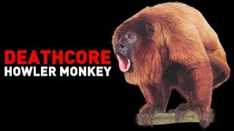 Deathcore Howler Monkey (By Andrew Baena)
