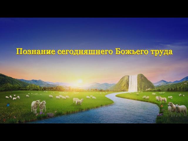 Дорогие друзья, вы понимаете Божью работу? просмотрите это видео и найдите ответ. Пусть Бог приведет нас! Слово Всемогущего Бога «Познание сегодняшнего Божьего труда»