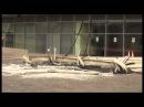 Донбасс Арена после обстрела 20.10.2014 Донецк