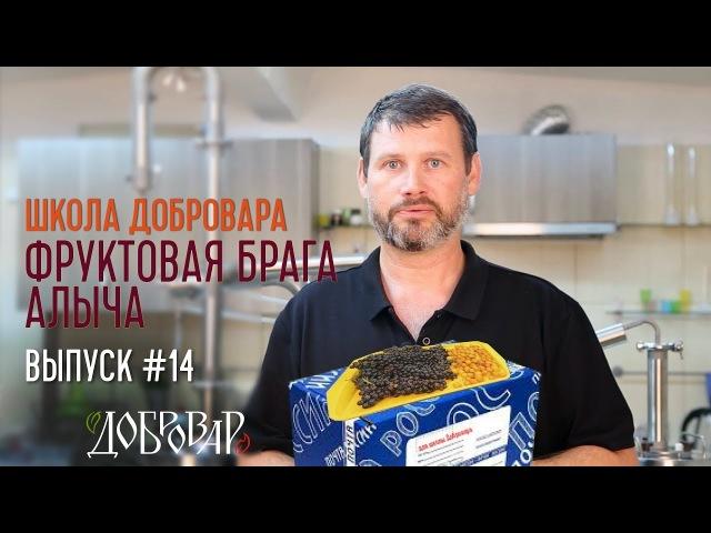 Фруктовая брага - Алыча - Школа Добровара 14