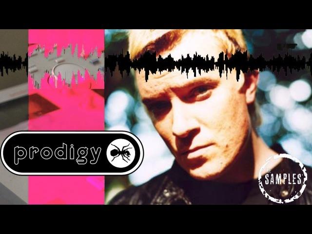 The Samples: The Prodigy Edition 1996 - 2004 Bonus Samples