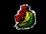 Alborosie Reggae Mix 2013 - Jean Spencer DJ-set