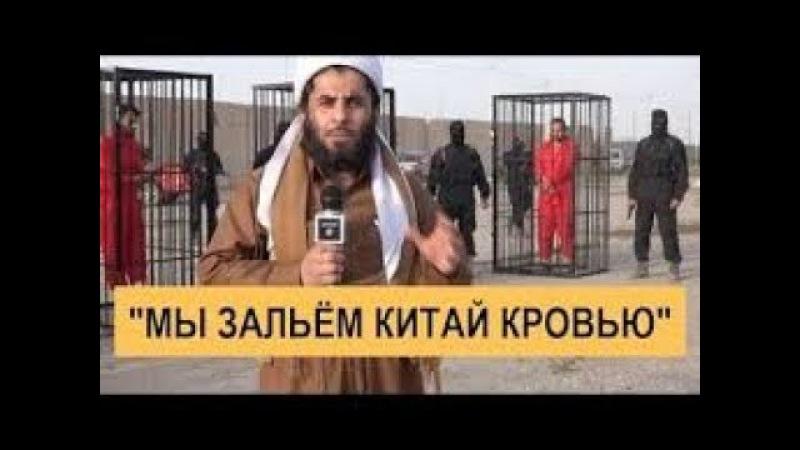 ИГИЛ УГРОЖАЕТ КИТАЮ РЕКАМИ КРОВИ война сирия сегодня последние новости даиш
