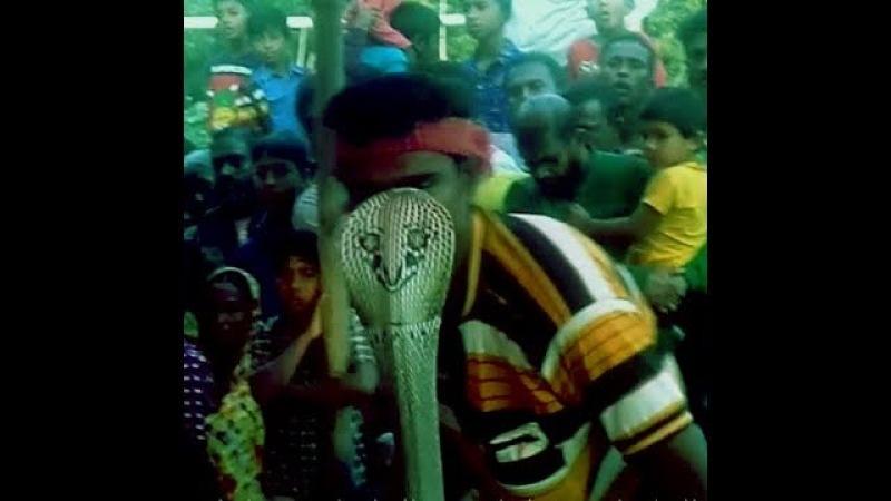 Snake dance fair in the village/Jhapan Khela/jhenidah
