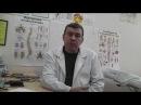 Как укрепить иммунитет Профилактика заболеваний