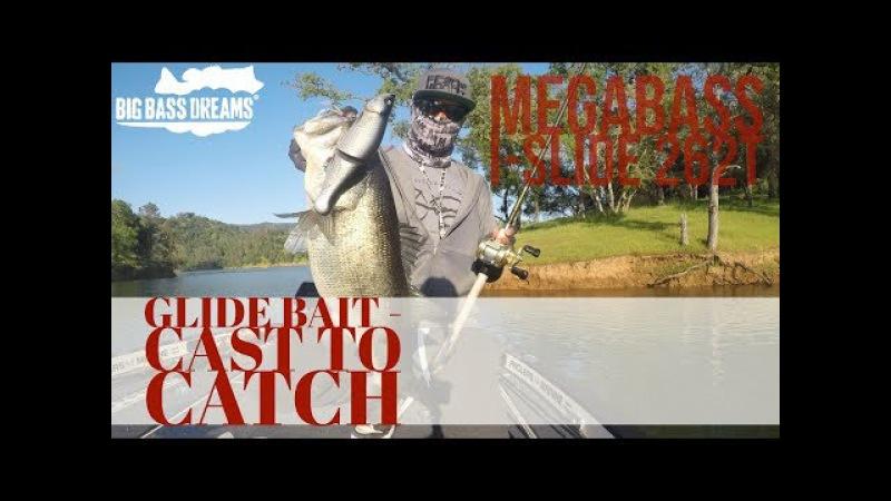Cast to Catch Megabass I-Slide 262t Glide Bait Largemouth