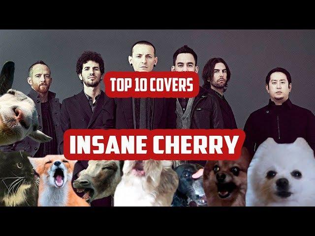TOP 10 COVERS INSANE CHERRY!||Топ 10 коверов Insane Cherry