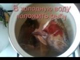 Уха из красной рыбы, как приготовить вкусную уху