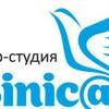 SEO продвижение сайтов Синица