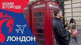 Кони в городе: Лондон