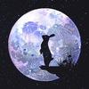 Moon Bunny Art ✨