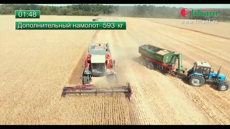 Демонстрационный показ бункера-перегрузчика Лилиани БП-16.С2 на уборке в Воронежской области