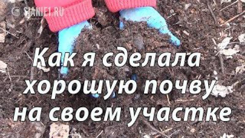 Как я сделала почву плодородной, 1 часть.