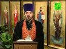11 декабря Преподобномученик Стефан новый